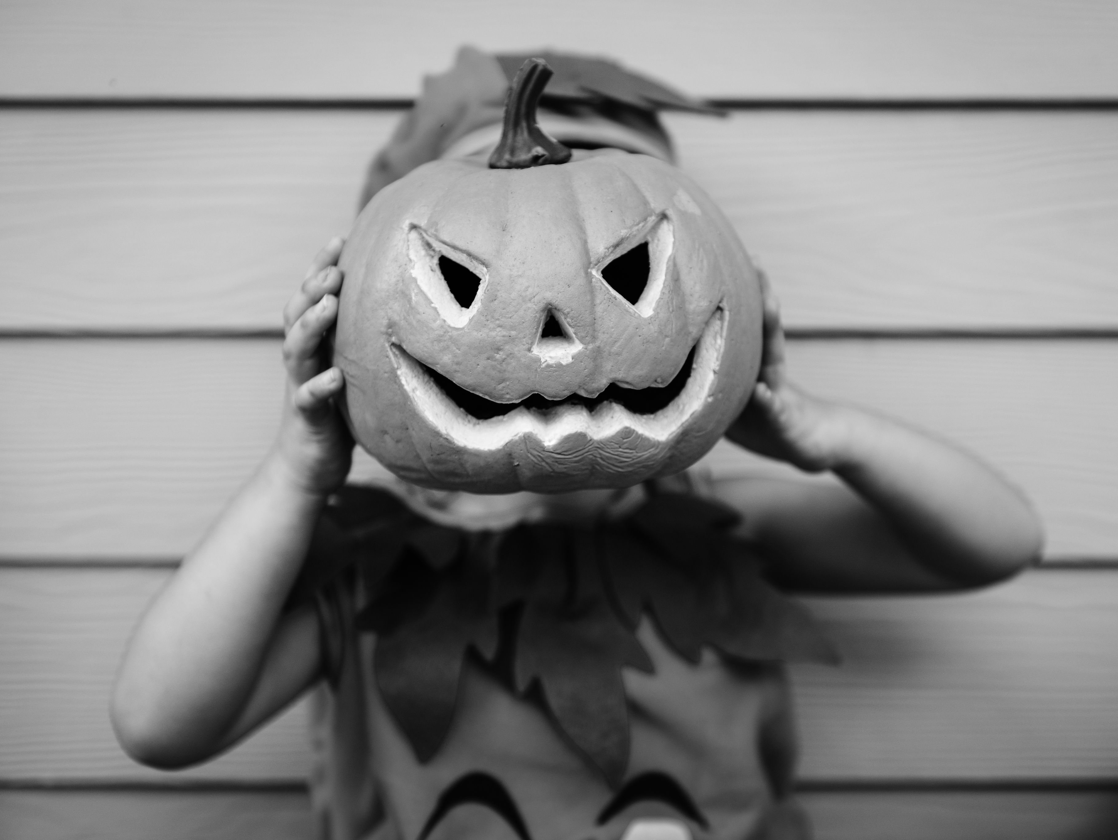 history of halloween - why is halloween celebrated?