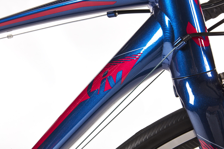 Liv Avail 1 Endurance Bike Review | Cheap Road Bike for Women