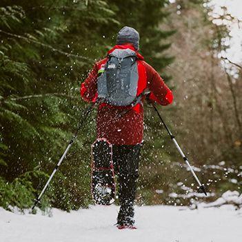 Snow, Winter, Footwear, Recreation, Outerwear, Tree, Fun, Adventure, Forest, Plant,