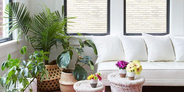 . 40  Best Living Room Decorating Ideas   Designs   HouseBeautiful com
