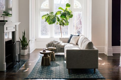 Living room, Room, Furniture, Interior design, Property, Home, Floor, Houseplant, Couch, House,