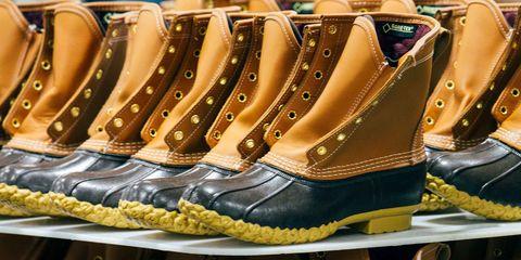 Footwear, Shoe, Boot, Brown, Durango boot, Motorcycle boot,