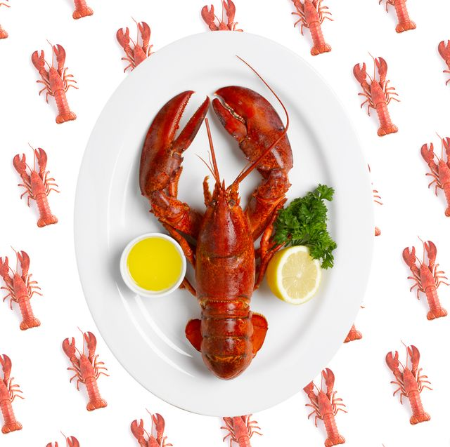where to buy lobster online