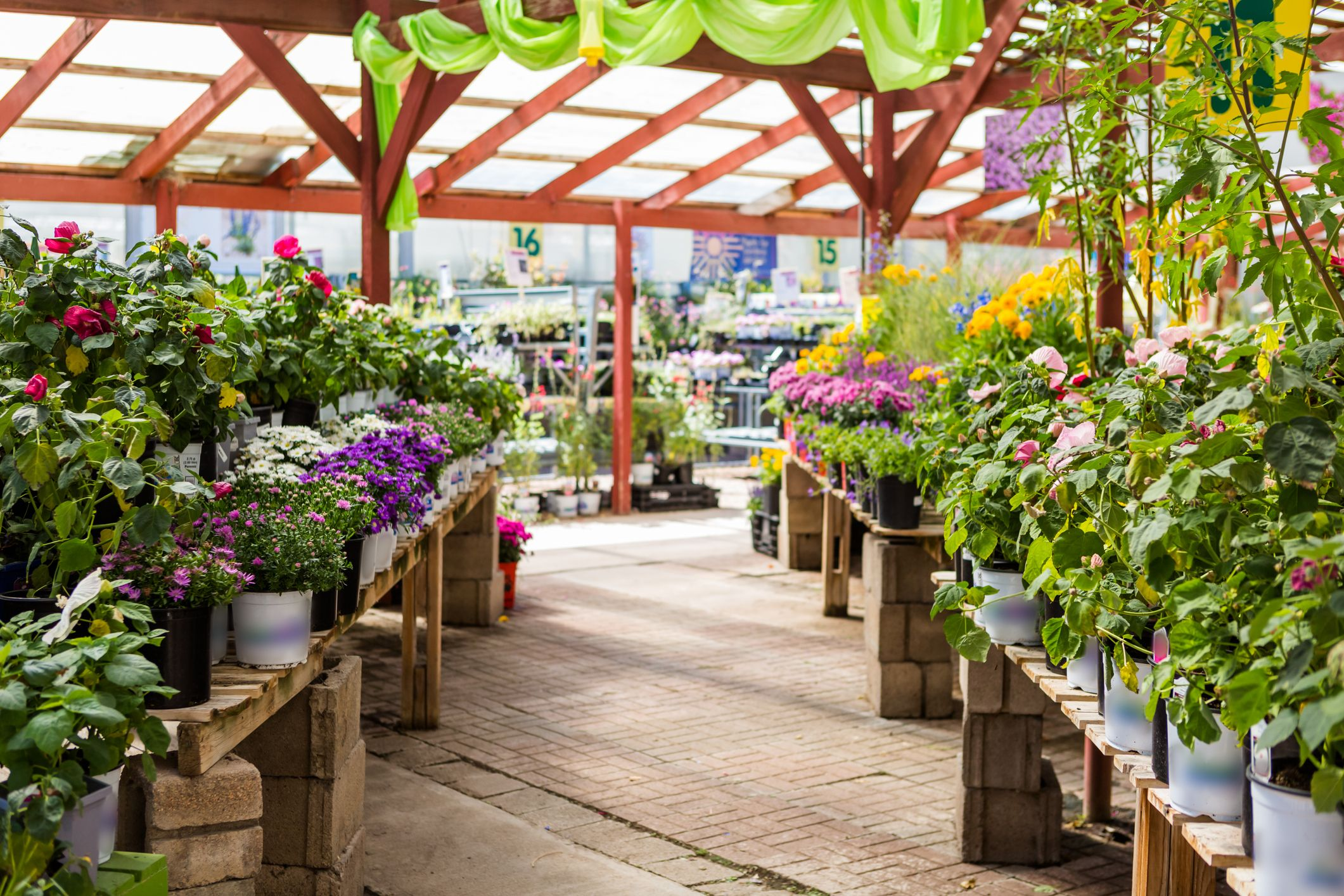Second lockdown: Will garden centres in England remain open?