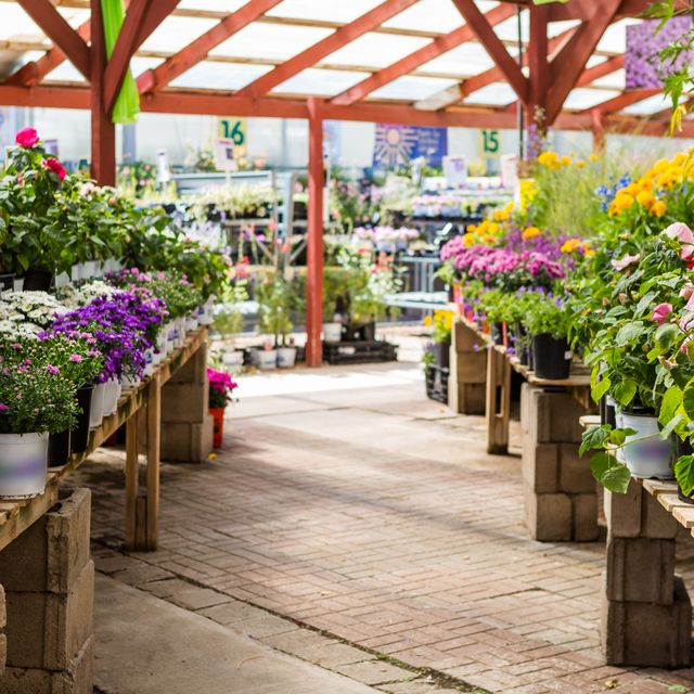 Second Lockdown Will Garden Centres In