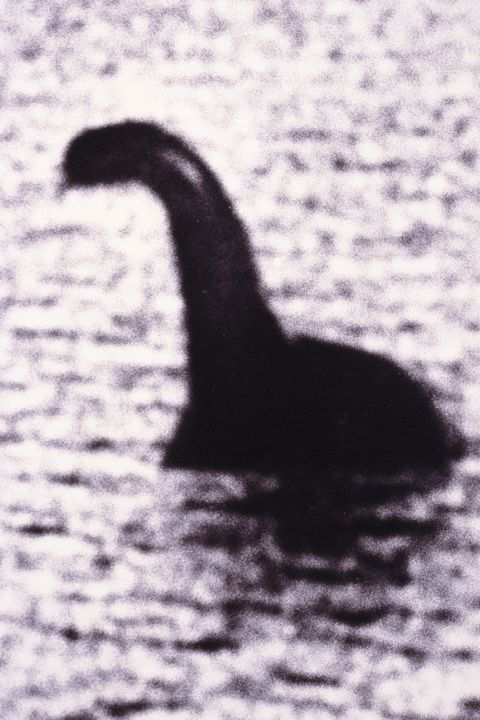 Loch Ness Monster (composite, B&W))