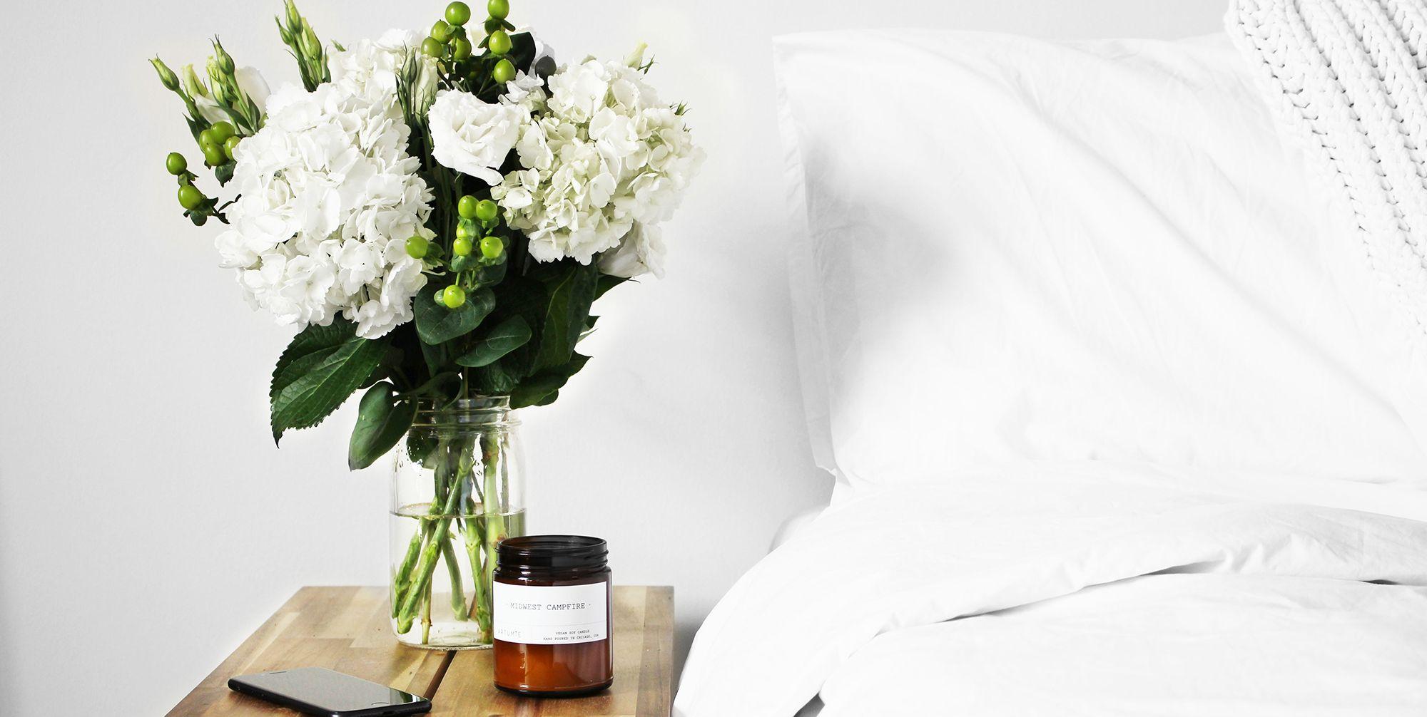 Quali sono le piante da camera e perché ti aiuteranno a dormire meglio