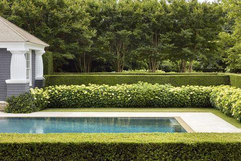 Inside A Lush Hamptons Property By Hollander Design Landscape