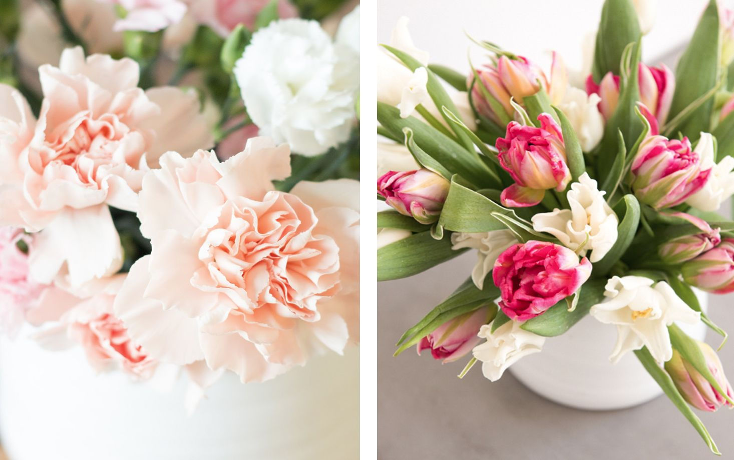 Elle Decor & 7 Gorgeous Long Lasting Flowers - The Best Long Lasting Cut Flowers