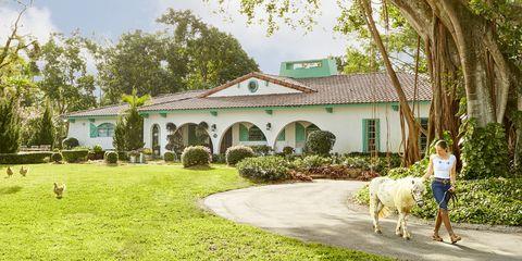 florida housedecorating ideas - horse farm