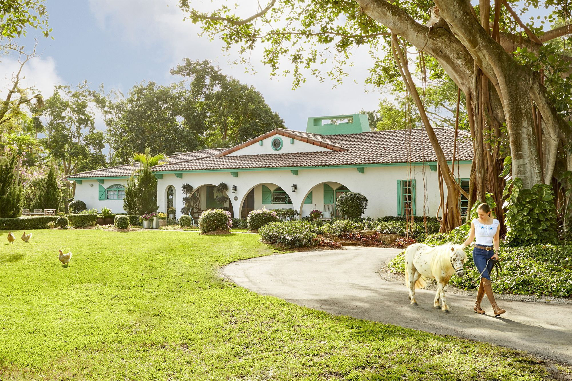 Florida House Decorating Ideas   Horse Farm