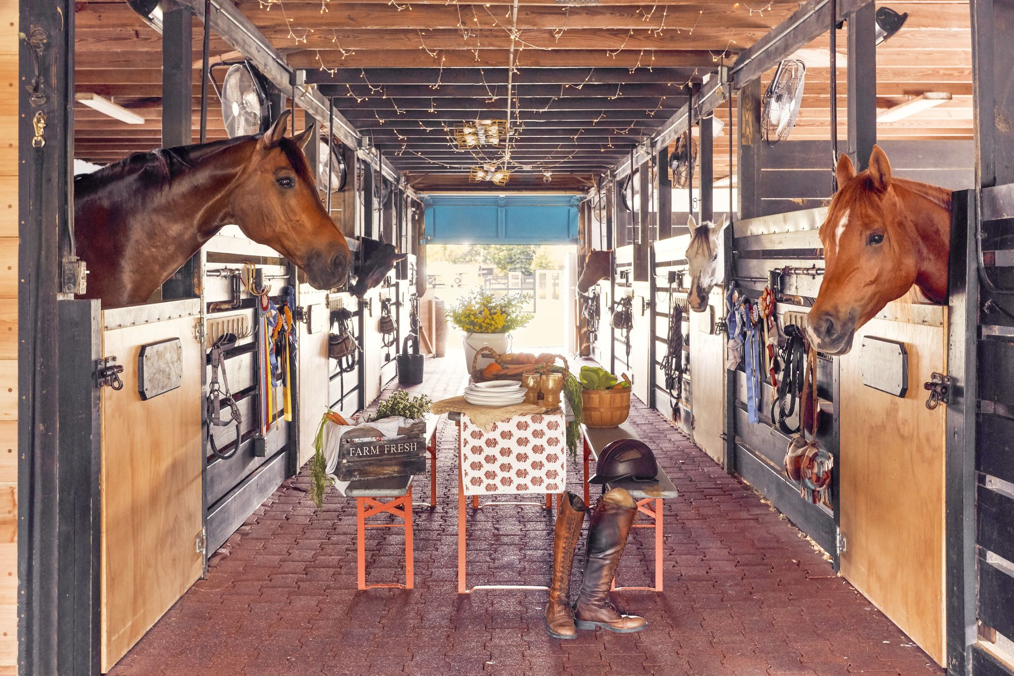 This Florida Horse Farm Offers Plenty Of Colorful Decorating Ideas