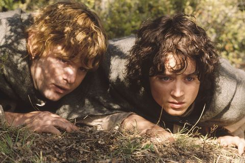 sean astin as sam and elijah wood as frodo in lord of the rings