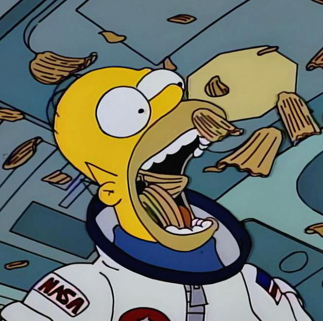 los simpson homer en el espacio