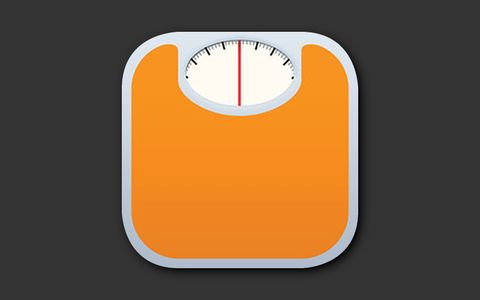lose it calorie counter