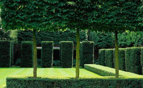 Luciano giubbilei un architetto di giardini italiano a londra for Architettura giardini