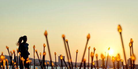 lucy-light-forest-art.jpg