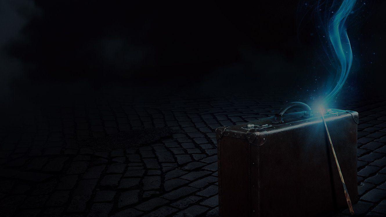 Las teorías fan más locas sobre 'Animales Fantásticos' - Harry Potter peliculas