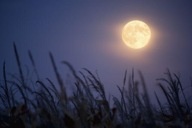 luna piena in acquario 3 agosto 2020