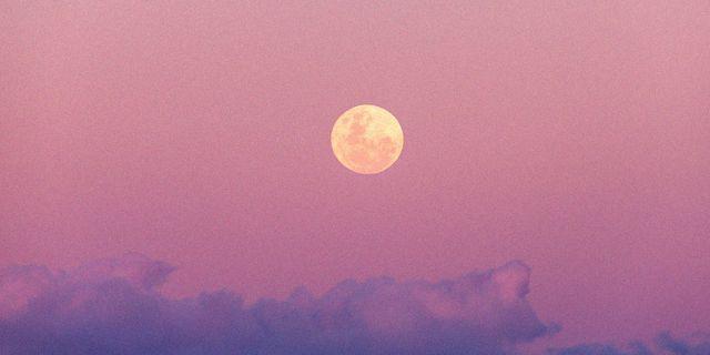 luna piena leone 28 gennaio 2021 effetti segni zodiacali