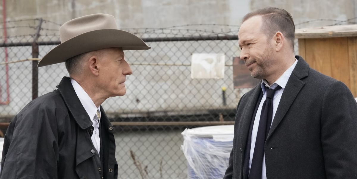 'Blue Bloods' Got Some Mixed Reactions to Lyle Lovett's Appearance on the Show