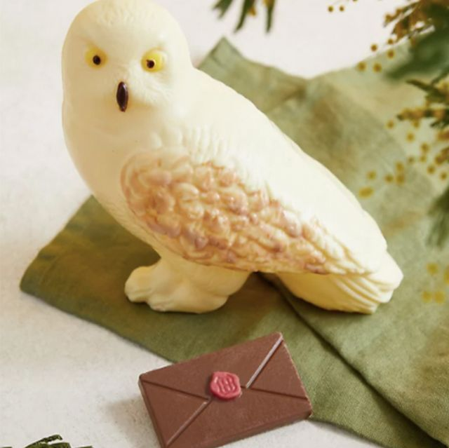 ms chocolate hedwig owl
