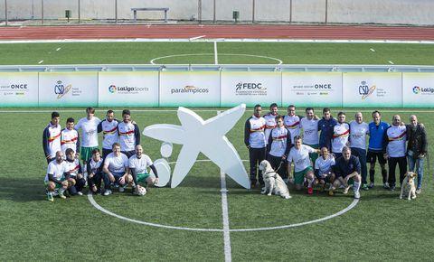 Sports, Team, Team sport, Sport venue, Player, Grass, Stadium, Ball game, Championship, Tournament,