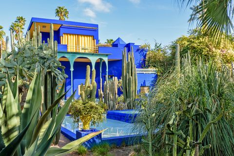 jardin majorelle garden marrakech morocco the blue house and pool surrounded by palm trees and cactus plants