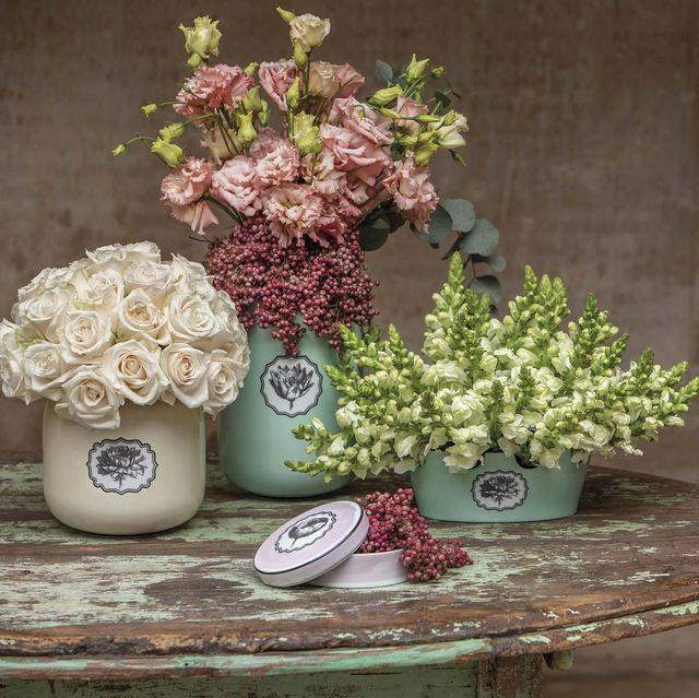colección herbariae,  de christian lacroix para vista alegre
