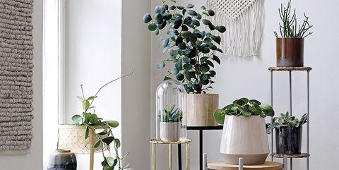 White, Furniture, Floor, Flowerpot, Room, Interior design, Table, Houseplant, Iron, Shelf,