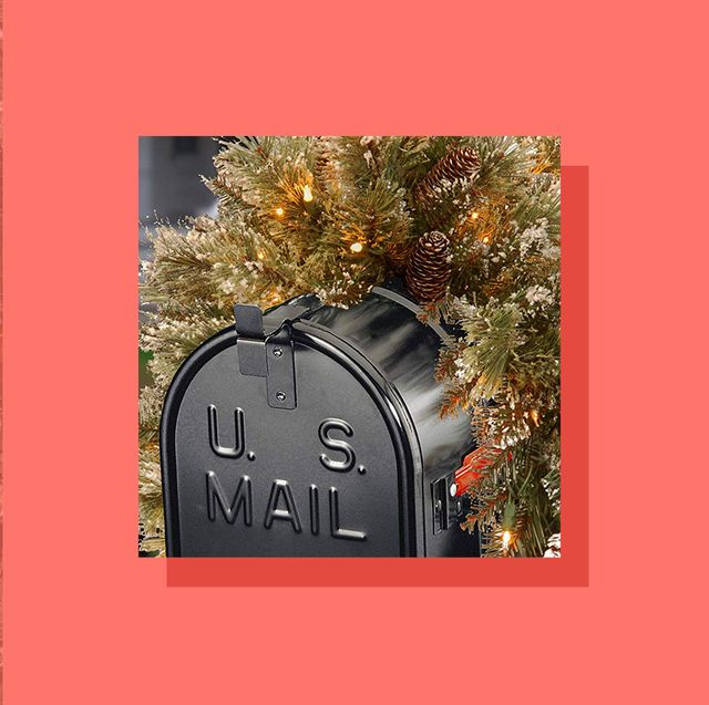 10 Best Christmas Mailbox Decor Ideas 2019 Holiday Mailbox