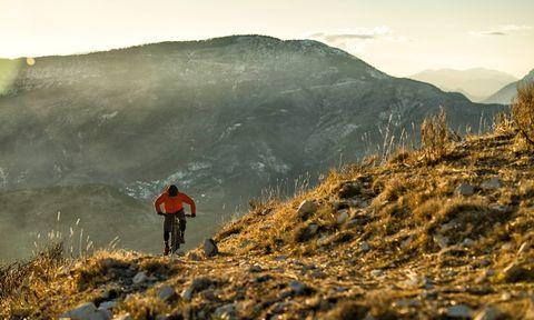 Trek, trek powerfly, mountainbik, gear,