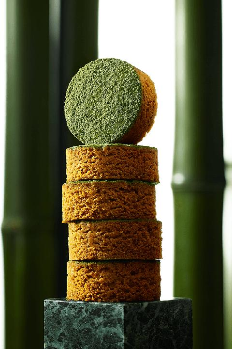 Green, Plant stem, Tree, Wood, Plant, Still life photography, Circle,