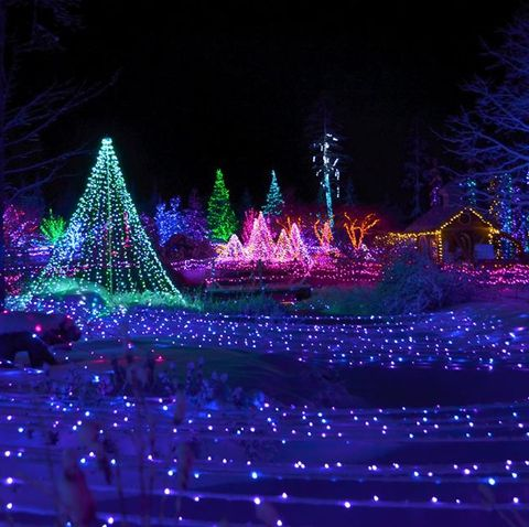 Callaway Gardens Christmas Lights.Best Christmas Light Displays In Every State Pretty