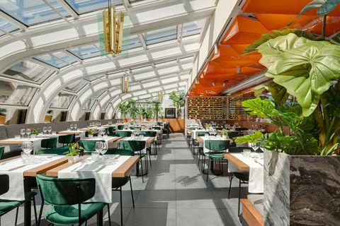 Restaurant, Building, Interior design, Greenhouse, Real estate, Architecture, Table, Cafeteria, Roof, Plant,