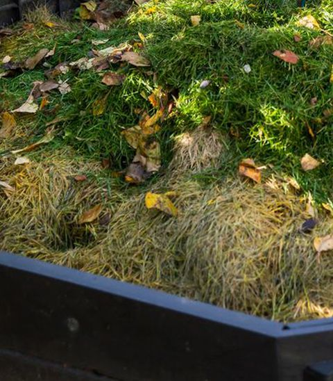 making compost in composting bin in small garden