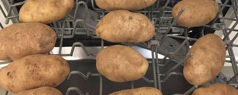 Nourriture, pomme de terre, légume racine, solanum, pomme de terre Russet burbank, plat, légume, pomme de terre or Yukon, cuisine, tubercule,