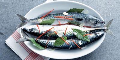 Makreel knoflook pepers laurier
