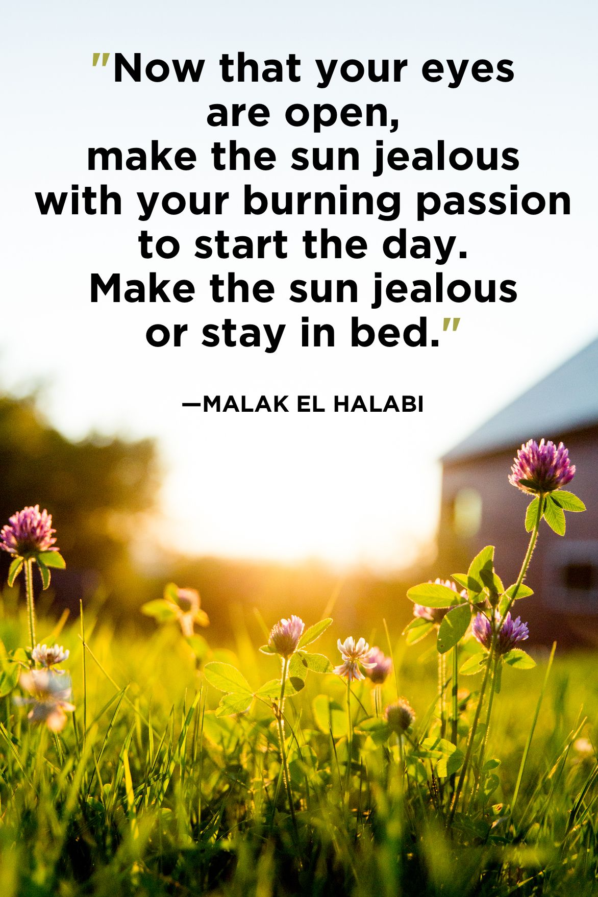 5 Best Good Morning Quotes - Good Morning Quotes For Her