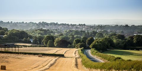 Sky, Natural landscape, Atmospheric phenomenon, Tree, Field, Rural area, Road, Landscape, Hill, Grass family,