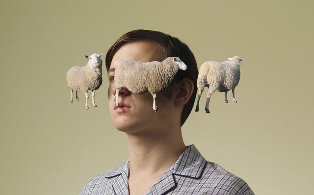 man counting sheep
