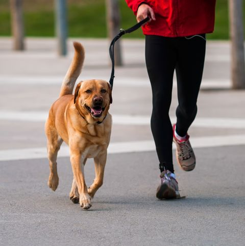 Weight Loss Tips - Walking
