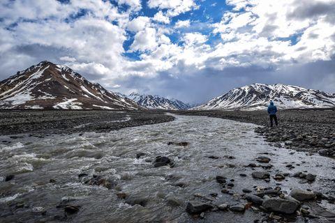 Man looking at Toklat river