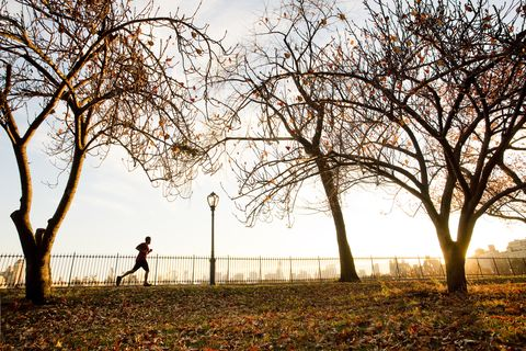 A man running in Central Park in autumn