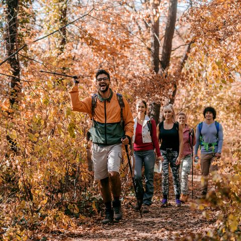 man showing other hikers right way while walking in woods