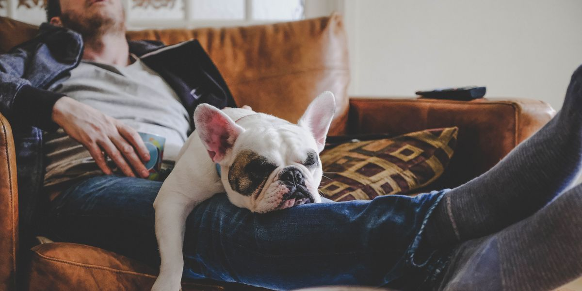 Lockdown fatigue: 8 reasons you're tired and how to fix it