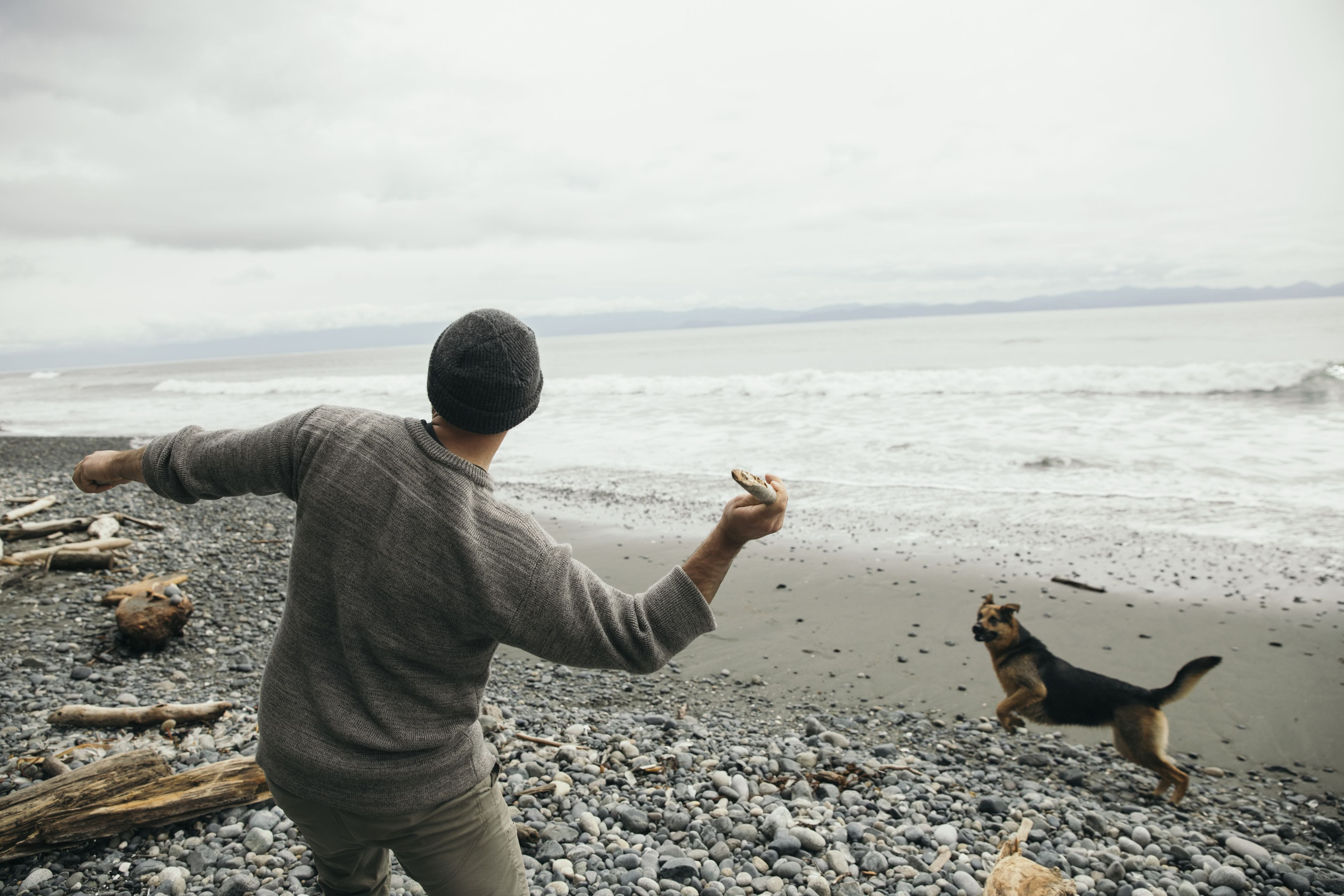 Man throwing stick for dog on rugged beach
