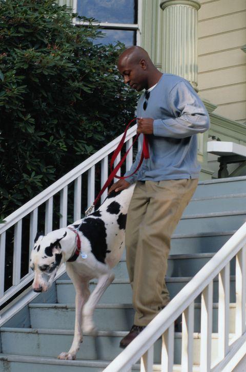 man walking his pet dog down the stairs