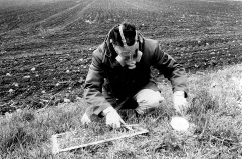 A man taking a sample from the ground
