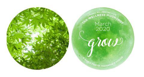 Wellness Moonshot March calendar